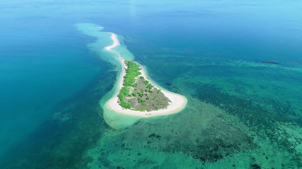 disappearing islands in india