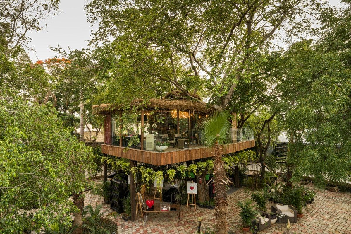 the tree house in delhi