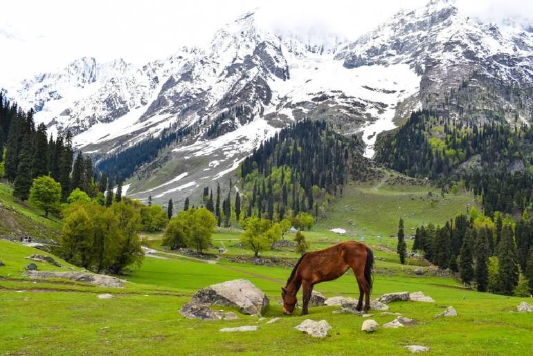 IRCTC Mumbai To Kashmir Tour Package